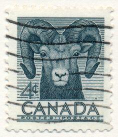 Wildlife Series, Bighorn Sheep (issued 1953)