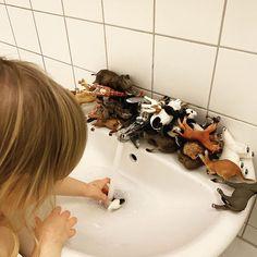 Guten Morgen! Ich habe heute mal den Spieß umgedreht und um 04:00 morgens das Kind wachgehustet, das ziemlich müde und motzig reagiert hat. Ach nee, Baby, willkommen in meinem Leben 😂. Sobald sie aber ihre Tiere waschen darf, ist die Welt wieder in Ordnung. . . . . Eine Sekunde lang war ich ja doch etwas schadenfroh, ich schiebe ja sehr viele Nachtschichten mit ihr. Denkt ihr auch manchmal: ätsch ätsch!! 😜 . . . . #planningmathilda#gutenmorgen#butfirstcoffee#frühaufsteher#erkältung#... Bath Caddy, Diy Baby, Getting Up Early, Kid Cooking, Little Kitchen, Good Morning