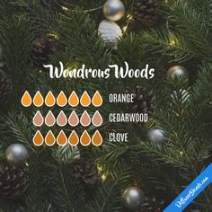 Wondrous Woods - Essential Oil Diffuser Blend