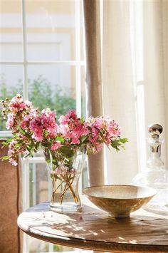 O frescor de um lindo vaso de flor ao sol...