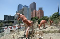 Downtown street art: Deer find new grazing area