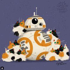 もしもスター・ウォーズのキャラたちが猫を飼ってたら? ディズニー・スタジオのデザイナーが描いたイラストが超キュート!!