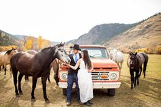 bride and groom with horses next to vintage  truck on wedding day |  Wedding horses