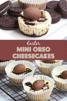 Every bunny is going to love these mini cheesecakes at Easter! There's a Thermomix and regular recipe too! Easter Cheesecake, Mini Oreo Cheesecake, Oreo Cake, Easter Recipes, Easter Desserts, Easter Cake, Easter Food, Easter Treats, Baking Recipes