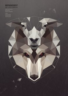 Wolf in sheep skin by Kevin Harald Campean, via Behance