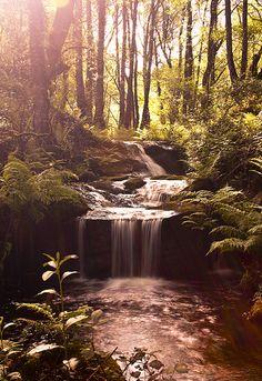 Paradise!... Galicia.