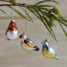 Decorative Glass Birds            Decorate your home with these cute and quirky birds. The boxed set contains 6 painted glass birds, with a charming retro feel. Each set of decorations features three different designs and colours.                                    £15.50