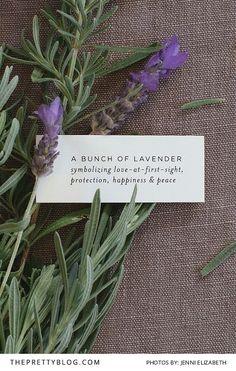 Effortless Lavender DIY Wedding Favour | Photography by Jenni Elizabeth | Stationery by Seven Swans