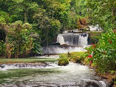Cool your feet in Dunn's River Falls in Jamaica.