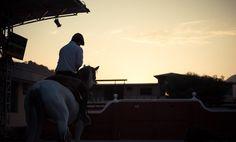 www.pegasebuzz.com | Equestrian photography : Tabata Briceno - Horses.