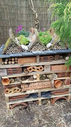 insects Your gardens are share your builds with us, like Lindsey's bug hotel! Garden Bugs, Big Garden, Garden Planters, Bug Hotel, Sensory Garden, Diy Garden Projects, Backyard For Kids, Backyard House, Tropical Garden