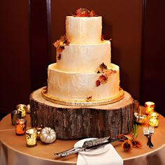 Rustic Fall Wedding Cake. different colors but still like the frosting look. And the tree stump
