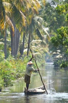 The Kerala Backwaters | #Information #Informative #Photography