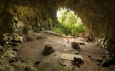 Mounting evidence suggests 'hobbits' were wiped out by modern humans' ancestors 50000 years ago.