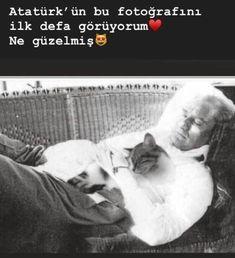 Creative Portrait Photography, Creative Portraits, Karma, Turkish Soldiers, Book Lovers, Hogwarts, Dog Cat, Mood, History