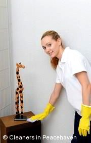 Domestic Cleaners Peacehaven