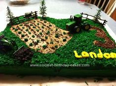Homemade Tractor Cake: My son had a John Deere tractor birthday party on a farm. This tractor cake was 2 9x13 sheet cakes that I put together. They weren't completely even and