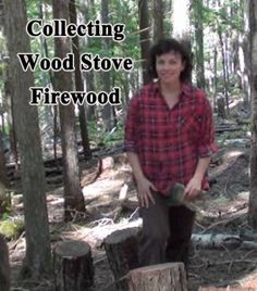 wood stove firewood choosing homestead homesteading self sufficient self sufficiency outdoor living off grid forest woods hardwoo. Cheap Firewood, Emergency Preparedness, Survival, Self Sufficient, Renewable Sources Of Energy, Clean House, Fun Workouts, Homesteading, Outdoor Living