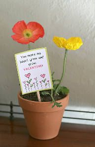 These Seed Packet Valentines are such a unique valentine idea for kids. It even comes with a free printable!