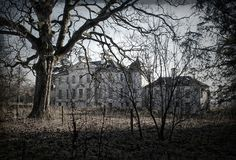 House of Gray, abandoned A-listed Palladian Mansion at Liff, by Dundee, Scotland ........ Lost in the woods