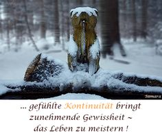 ... gefühlte #Kontinuität bringt zunehmende Gewissheit ~ das Leben zu meistern !