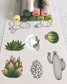 Succulent and cactus doodles with copic markers. #doodling #cactus #succulent #drawing #drawingideas Copic Marker Art, Marker Kunst, Succulents Drawing, Cactus Drawing, Bullet Journal Art, Bullet Journal Inspiration, Doodle Drawings, Easy Drawings, Sharpie Drawings