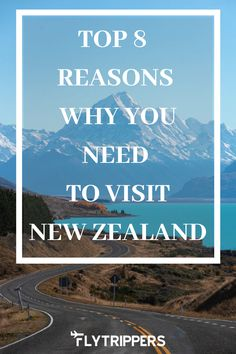 Reasons to visit the beautiful country of New Zealand. Culture, landscapes, food, adventures, beaches and wildlife in New Zealand. Visit New Zealand, New Zealand Travel, Adventure Trips, National Animal, Dream Trips, The Beautiful Country, Exotic Places, Water Activities, Worldwide Travel
