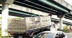 Heroico Homem Toma Decisão Arriscada Para Salvar Gatinho Que Ficou Preso Por Baixo De Viaduto