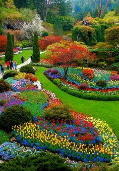 had a tour of the Butchart Gardens, Victoria, Vancouver Island, Canada. this place is too big and has an amazing landscape. Amazing Gardens, Beautiful Gardens, Beautiful Flowers, Beautiful Places, Dream Garden, Garden Art, Garden Design, Paradise Garden, Gardens Of The World