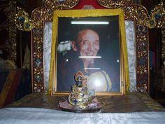Sogye Trichen Rinpoche