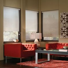 Deluxe Fabric Roller Shades image 1