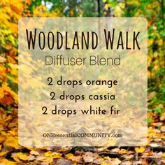 woodland walk diffuser blend PLUS recipes for 20 fall diffuser blends -- easy, non-toxic ways to make your home smell like fall using essential oils. and there's even a FREE PRINTABLE of all the fall diffuser blend recipes!!