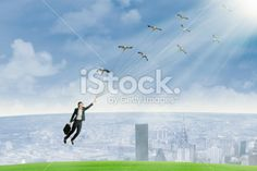 Business travel by using birds Royalty Free Stock Photo