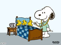 Dr. Snoopy | Snoopy: Classroom