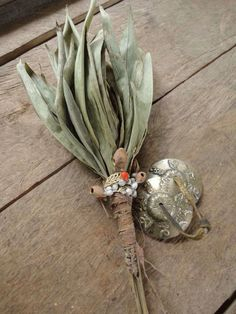 ✨Schacapa ✨is the leaf-bundle rattle of the shamans from the amazonian jungle and is considered the most important shamanic tool . The shacapa used by mestizo shamans is a bundle of leaves from the shacapa bush (Pariana spp.) tied together at the stem with fibers from the chambira, fiber palm (Astrocaryum chambira).   The magical icaros (chants) and gentle rustling rhythm of the schacapas are integral in achieving the trance state enabling communion with the Spirit World and facilitating…