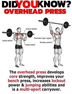 The over head p increases lockout power: More Strength = Ability to create more Power. With a heavier press you will feel more comfortable holding weight overhead. strengthen your back & torso what leads to an improved sports performance. Yoga Fitness, Fitness Tips, Fitness Motivation, Body Weight Training, Weight Lifting, Losing Weight, Overhead Press, Shoulder Workout, Crossfit