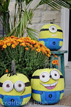Minion pumpkins - @Melissa Squires Squires dominic Shearer Mommi there might be pumpkins around the party time