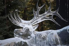 Ice Festival boston common | 35 Wonderful Ice Sculptures from Around the World | Free and Useful ...