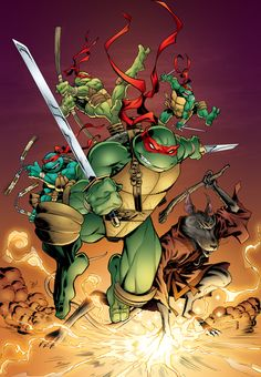 Teenage Mutant Ninja Turtles by Michael Dooney