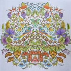 Adult Coloring, Coloring Books, Colouring, Enchanted Forest Coloring Book, Johanna Basford, Prismacolor, Love Birds, Color Inspiration, Tapestry