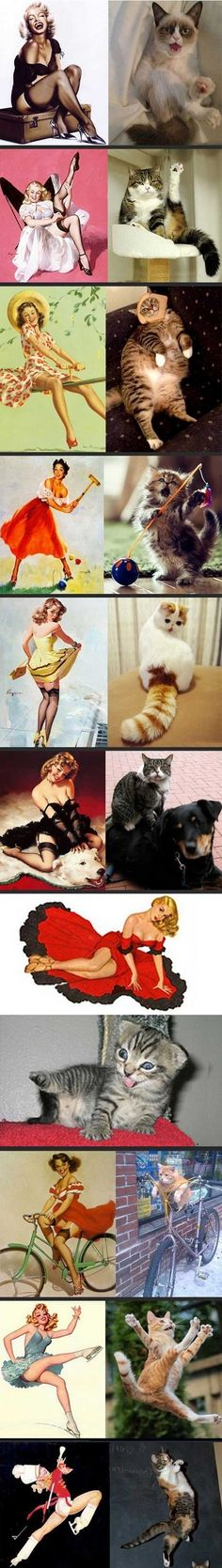 Cats imitating art :D