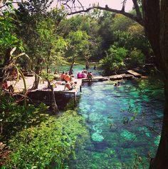 Cenote Azul en Tulum México es el paraíso. Hay lugar para visitar
