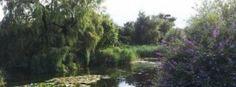 Shepreth Mill, Royston, Hertfordshire