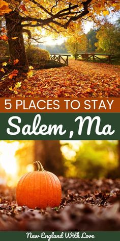 If you're visiting Salem, Massachusetts, you need to stay in the best (and perhaps, the spookiest) hotel! We share a selection of the best including a few haunted Salem hotels! #Halloween #Salem #NewEngland #Massachusetts #Fall #October New England Day Trips, New England Fall, New England Travel, Boston Vacation, Boston Travel, Vacation Spots, Vacation Ideas, Salem Ma Hotels, Fall In Connecticut