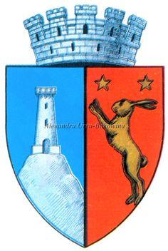 Ținutul Dunării. Județul Tecuci. Tecuci. Capital City, Coat Of Arms, Romania, Cities, Cards, Map, Playing Cards, City, The Sentence