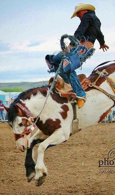 Rodeo Cowboys, Real Cowboys, Hot Cowboys, Cowboy Art, Cowboy And Cowgirl, Cowboy Humor, Cowboy Photography, Animal Photography, Rodeo Events