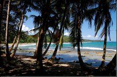 I have seen this exact spot. puerto viejo, costa rica.