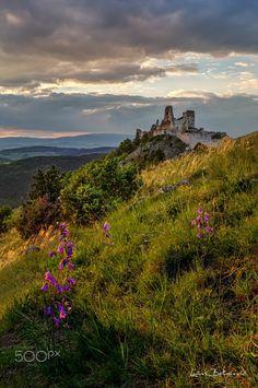 Flower sunset at Bathory castle Medieval Castle, Abandoned Buildings, Werewolf, Monument Valley, Photo Galleries, Scene, Explore, Sunset, World