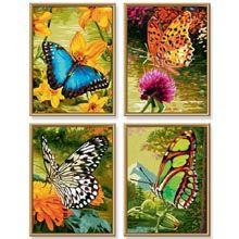 Schipper Butterflies Paint by Number