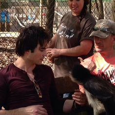 Ian Somerhalder - 10/04/14 - iansomerhalder got to meet our famous resident, Clark Gable, a spider monkey here at the Ark. #monkey #isf #vampirediaries #noahsark http://instagram.com/p/moBkhaQP2U/ - Twitter & Instagram Pictures